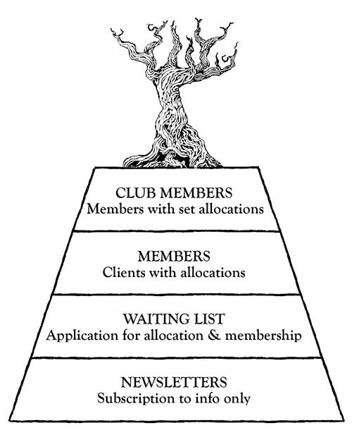 members-diagram-small